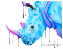 Rhinobordercopyright