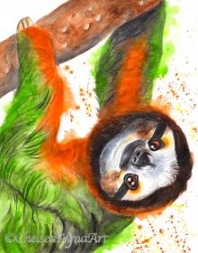 slothcopyright